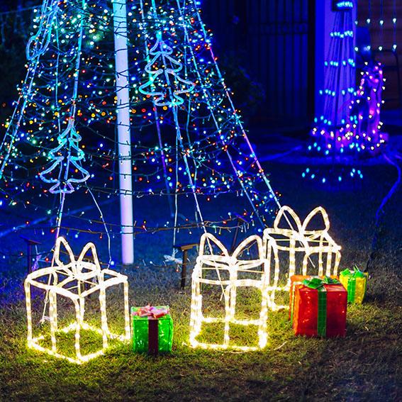 Christmas lights in garden.