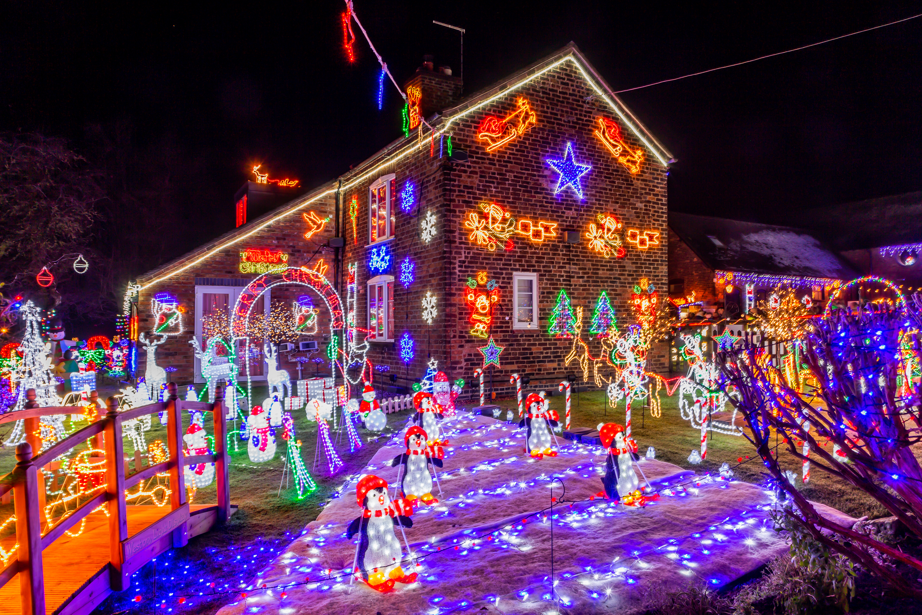 1st Front Garden Large Display - Weston Lights - Crewe