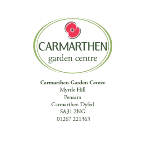 Carmarthen (2)