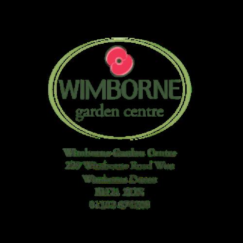 Wimborne (2)
