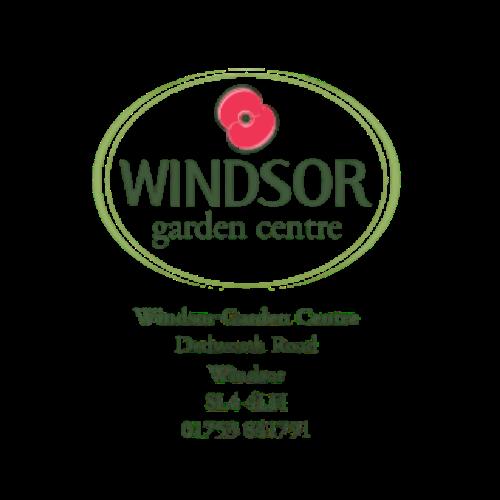 Windsor (2)